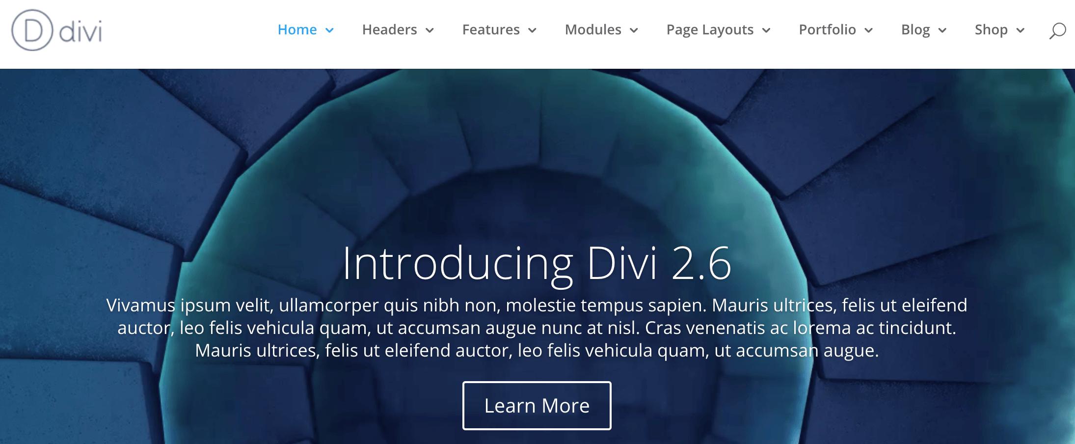 A screenshot of the official Divi header.
