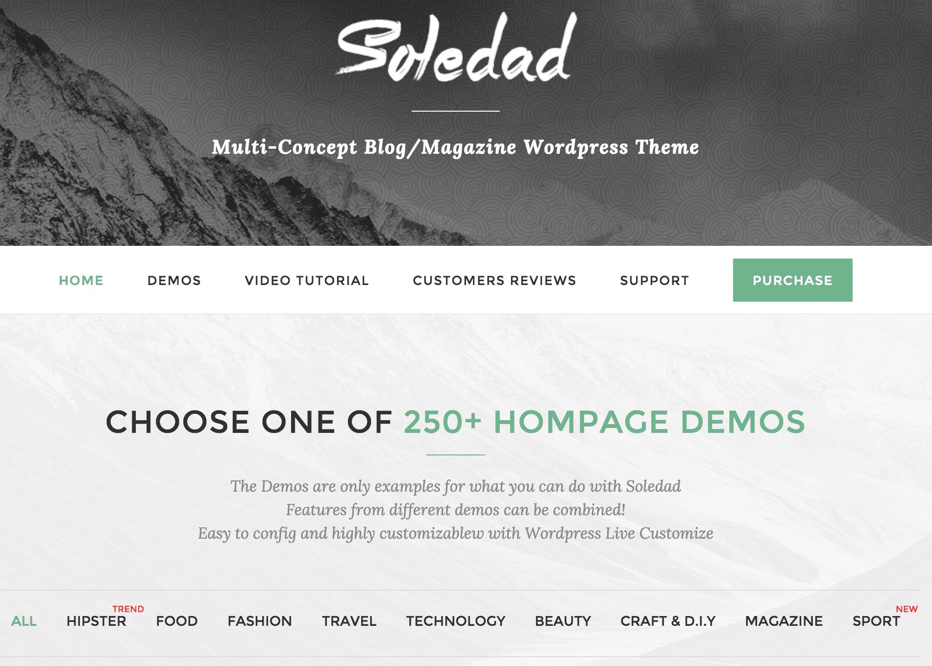 A screenshot of the Soledad theme.