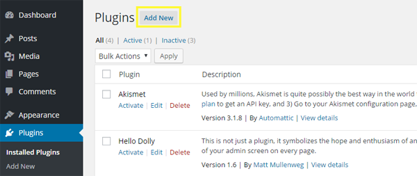 Screenshot of the Add New Plugin option.