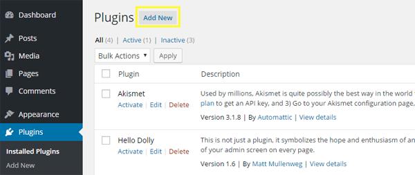 Screenshot of the Add New Plugin option.