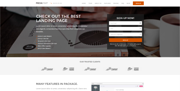 Best Landing Page WordPress Themes For High Conversion Websites - Website splash page templates
