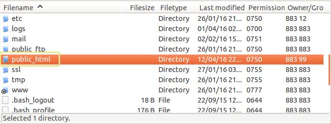 Screenshot of the public_html folder as seen in FileZilla.