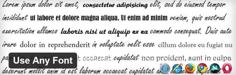 Screenshot of the Use Any Font plugin header.