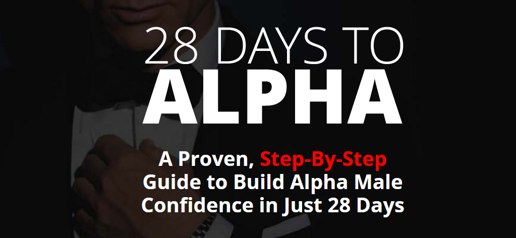 A screenshot of the 28 Days to Alpha homepage.
