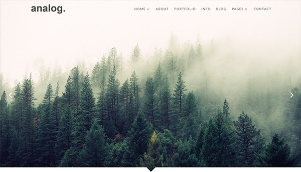Premium Divi Child Themes Big Analog
