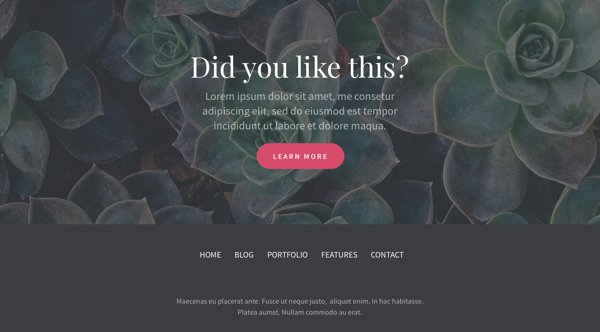 Divi-Footer-Layout-Pack-10
