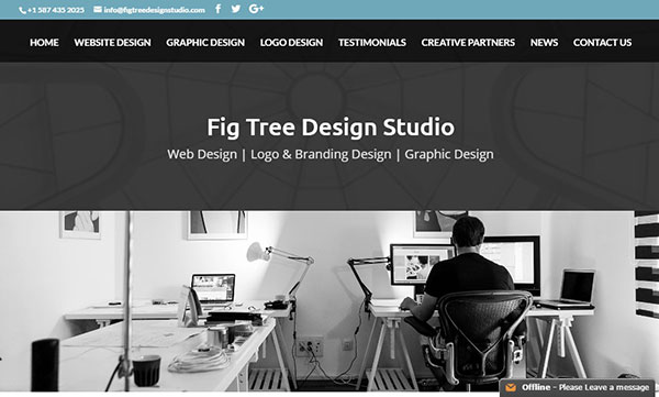 Divi Agencies Fig Tree