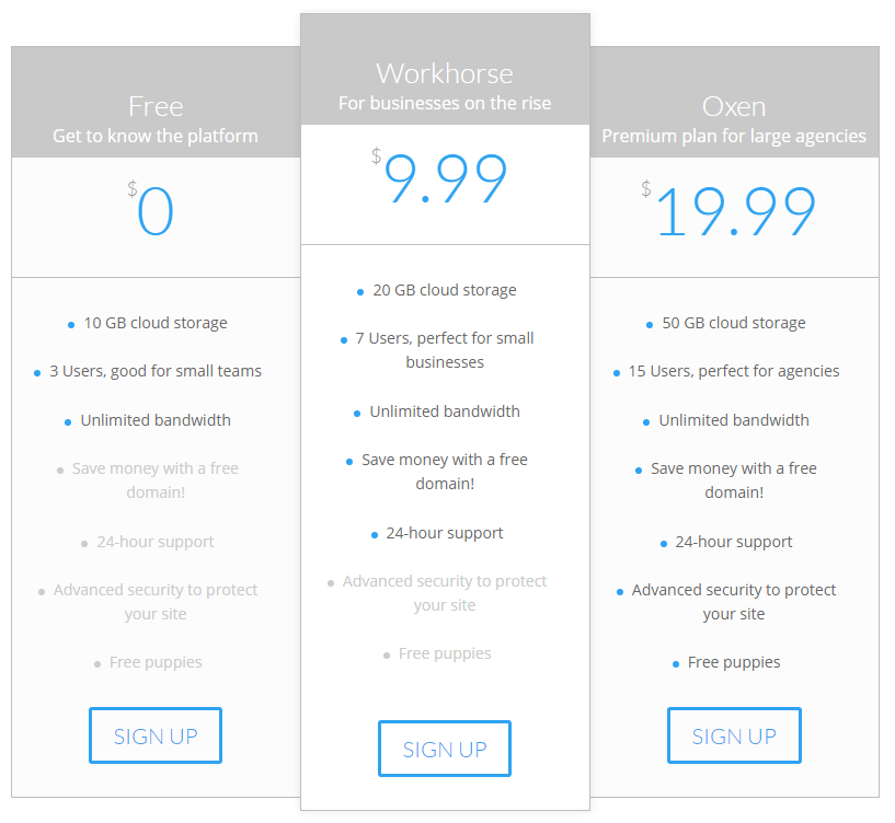 An example of a Divi pricing table with informative tier names.