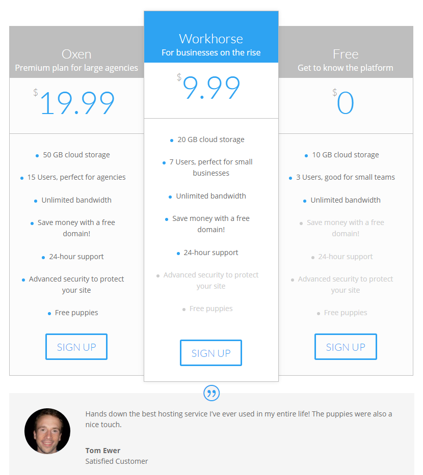 An example of the Testimonial module alongside a Divi pricing table.