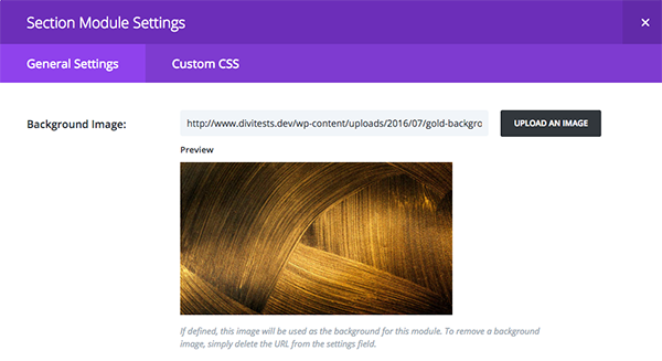 fashion-ghost-divi-contact-form-section-settings-1