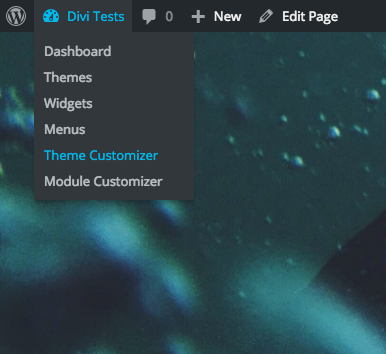 theme-customizer-dropdown-option