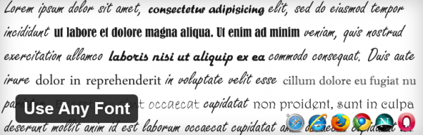 The Use Any Font plugin.