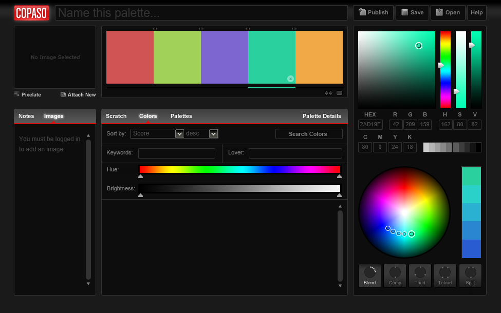 COPASO user interface