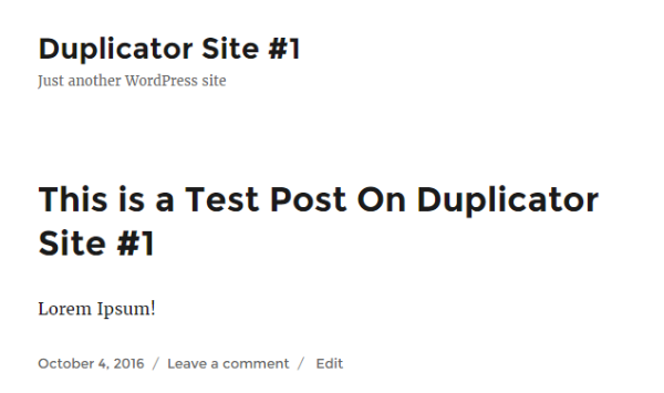 Duplicator Full New Site