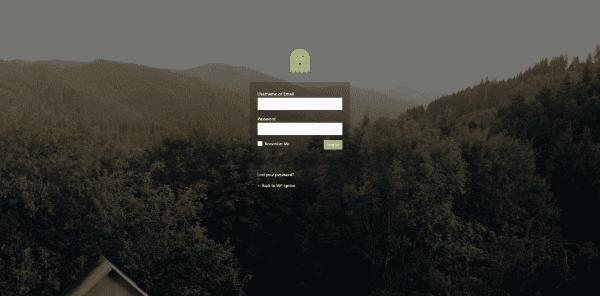 login-customizer-2