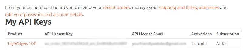 A screenshot of the DigiWidgets backend showing an API key.