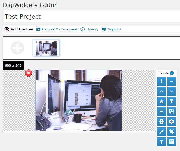 The DigiWidgets editor.
