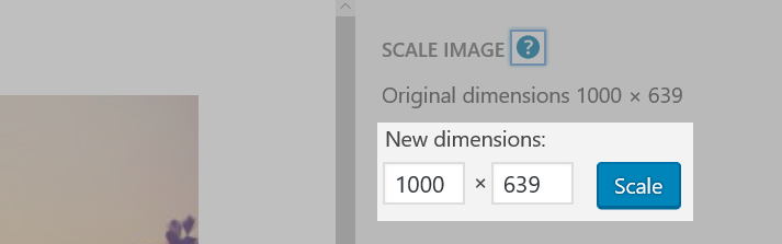 Part of the Edit Image screen with the New dimensions section highlighted
