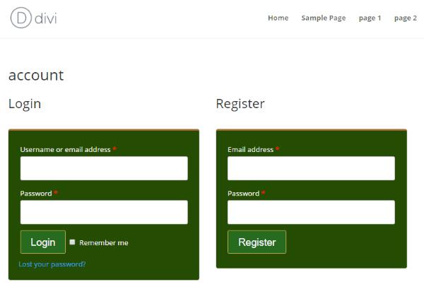 divi-commerce-divi-customizer-login-and-register-options-2