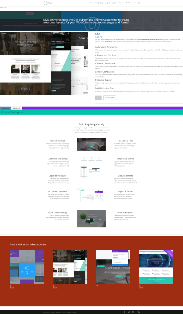 divi-customizer-example-1