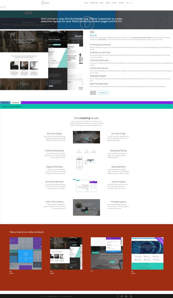 divi-customizer-example-1