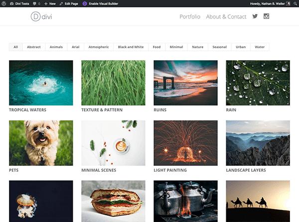 filterable-portfolio-final-closeup