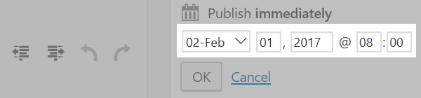 The Publish immediately section with the date and time options highlighted.