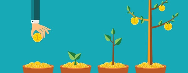 How to Identify and Grow Your WordPress Audience Effectively