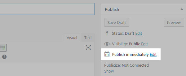 "A section of the post screen with the ""Publish immediately"" text and Edit button highlighted"