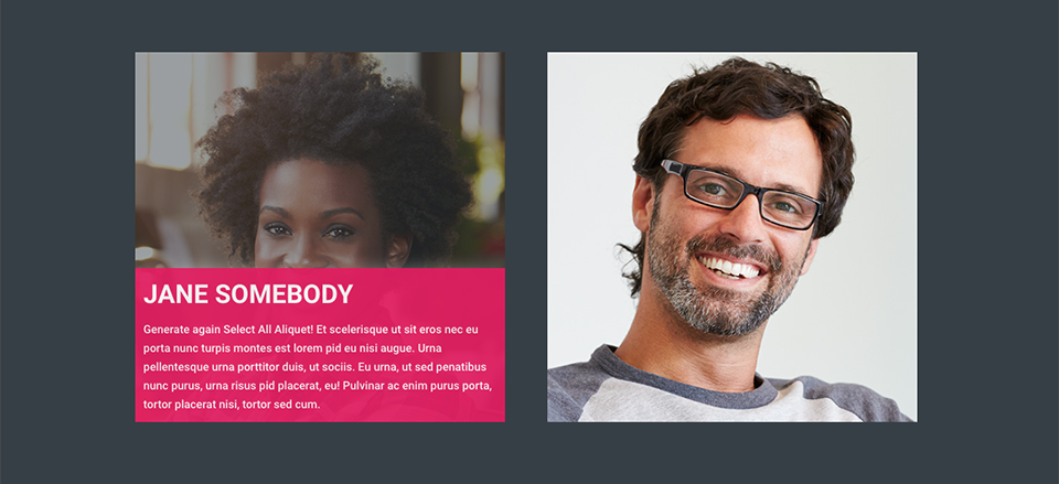 How To Add A Bio Hover Effect To Team Member Photos In Divi