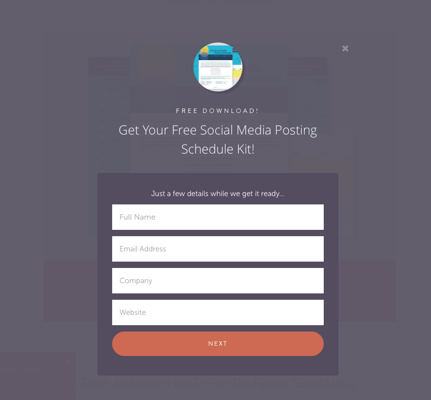 CoSchedule Opt-in Form Example