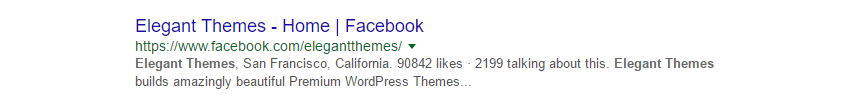 The result of a search using the keyword, Elegant Themes.