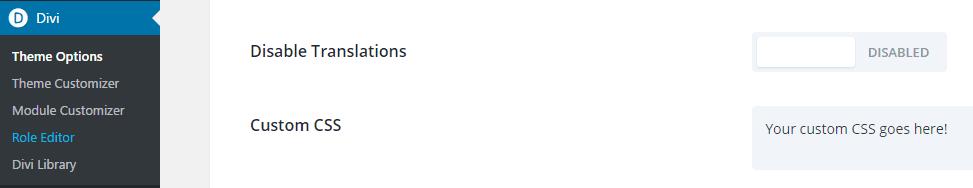 Divi's custom CSS option.
