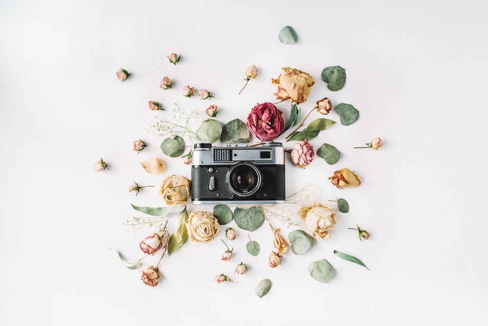 A centered camera with a spray of flowers surrounding it