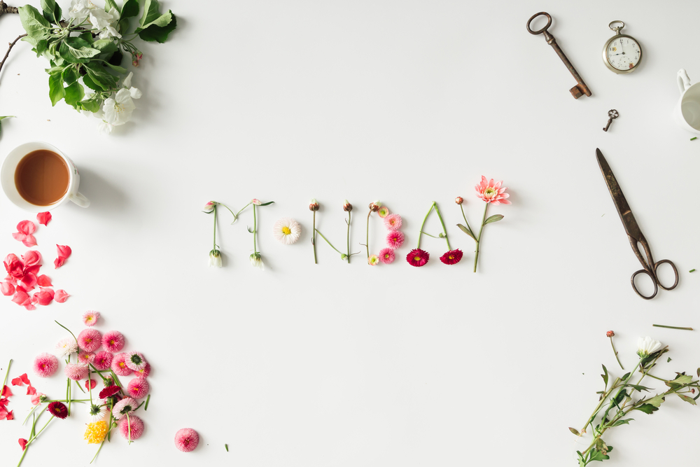"Flowers spelling out ""Monday"" on a white background"