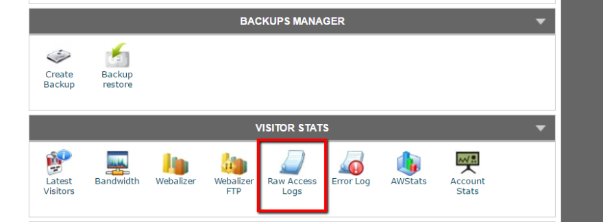 raw access logs