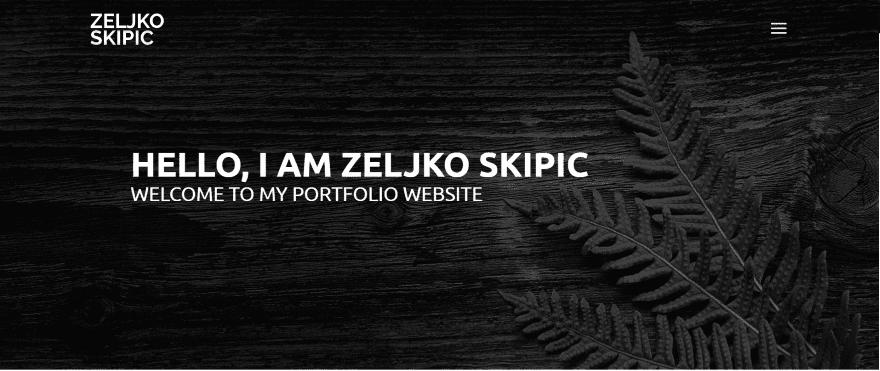 Zeljko-Skipic.png