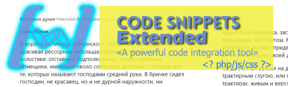 The Code Snippets Extended plugin.