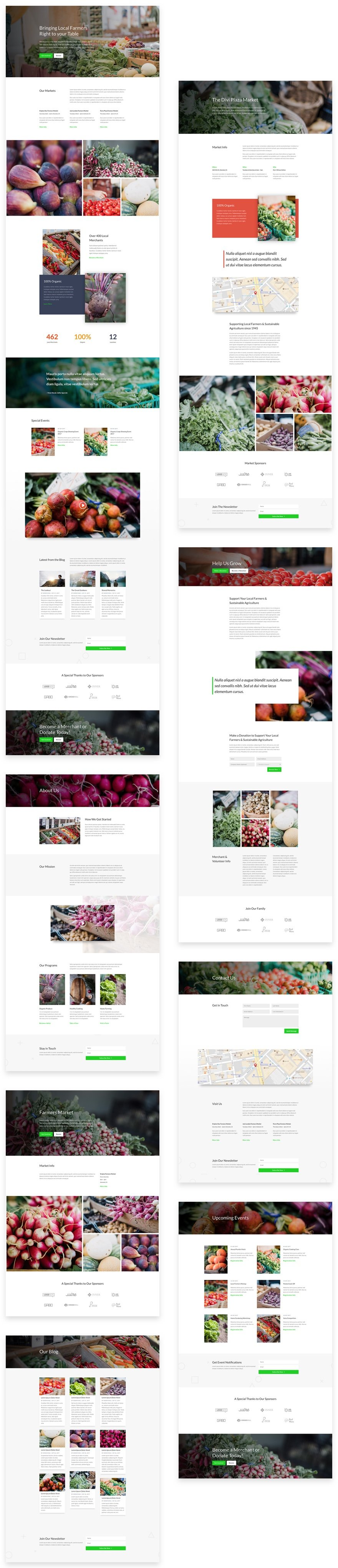 divi-farmers-market-layout-pack-grid