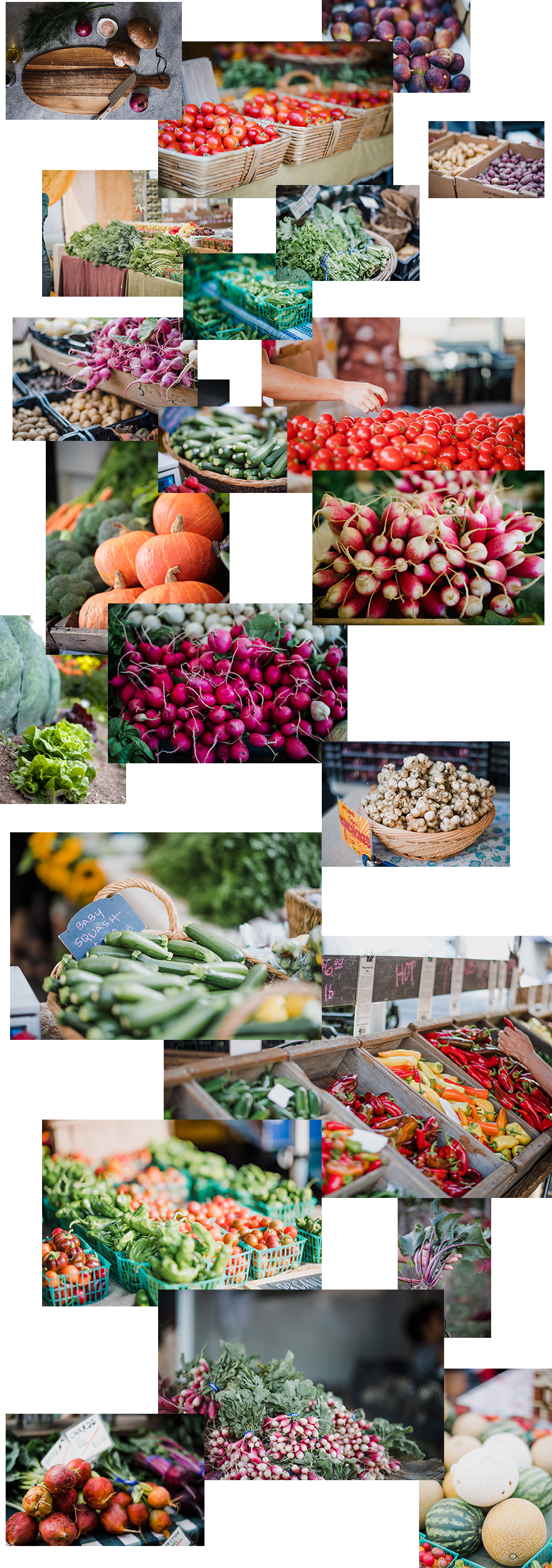 divi-farmers-market-layout-pack-image-assets
