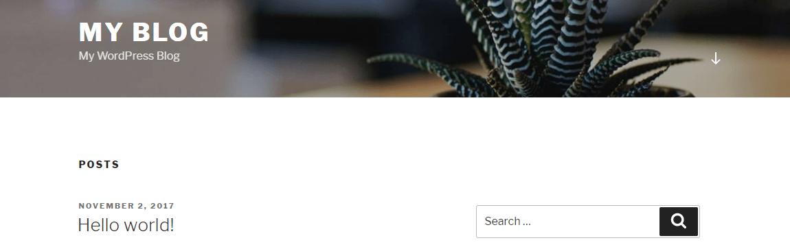 Your new WordPress website.