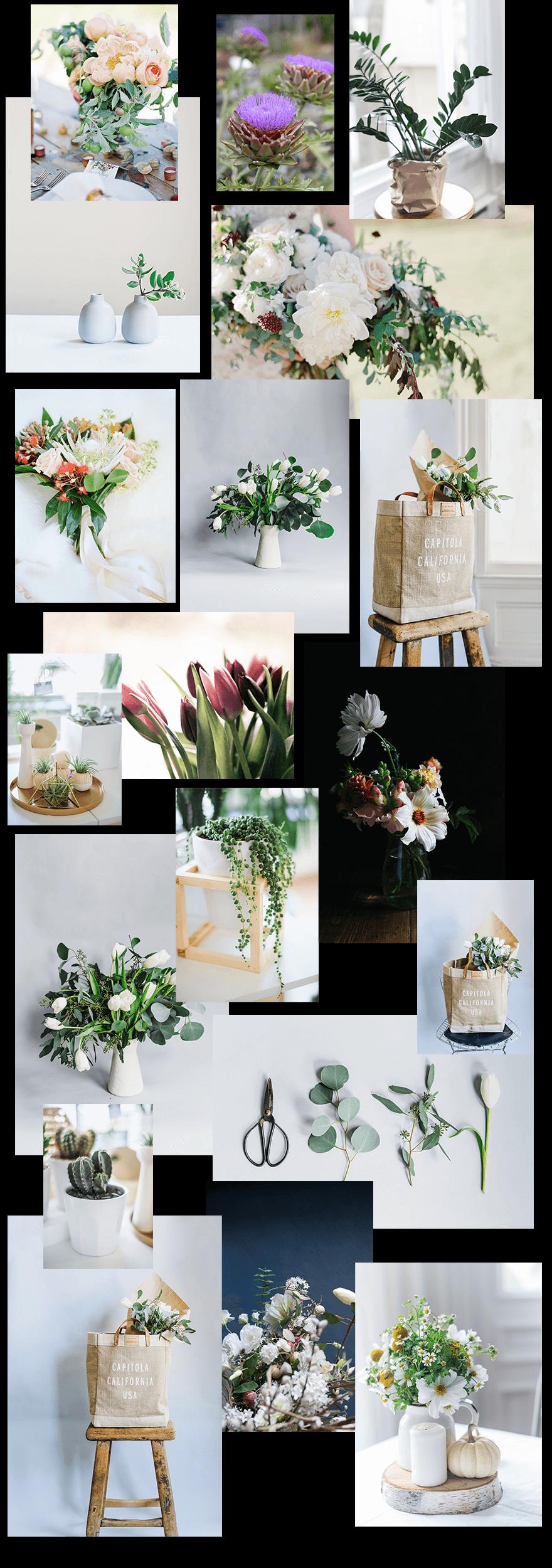 florist photos