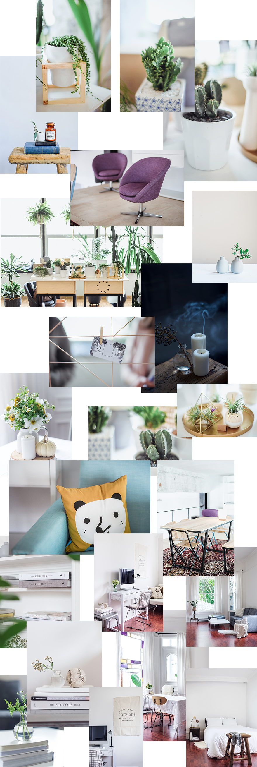 Download a Free Refreshing Interior Design Layout Pack for Divi