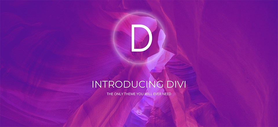 divi-year-in-review
