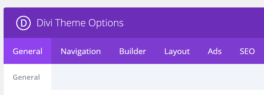 The Divi Theme Options menu.