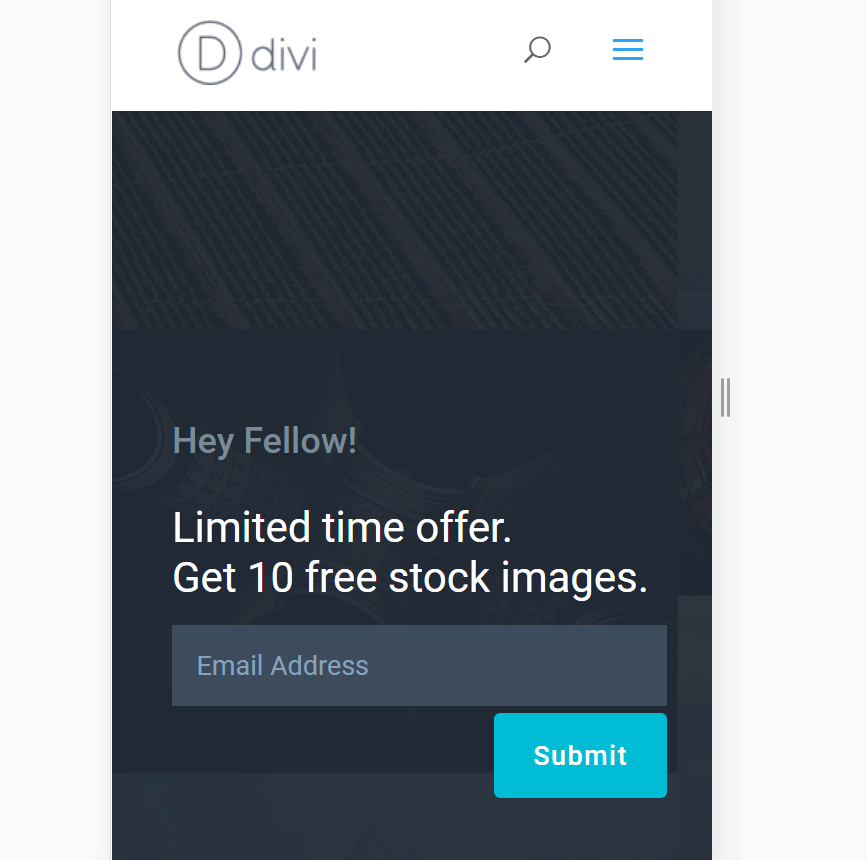 An example of a Divi landing page.