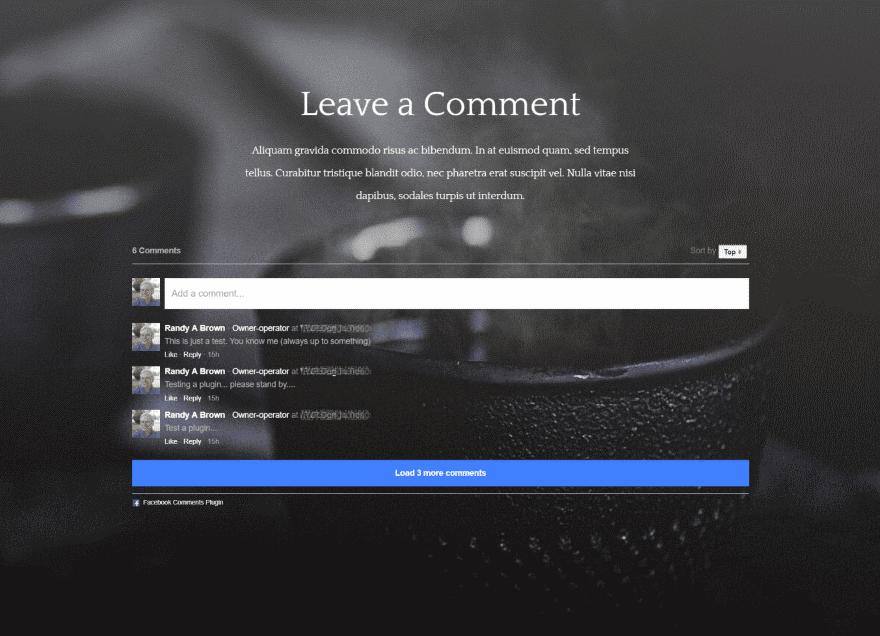 Divi Plugin Highlight: Facebook Comments Module | Elegant