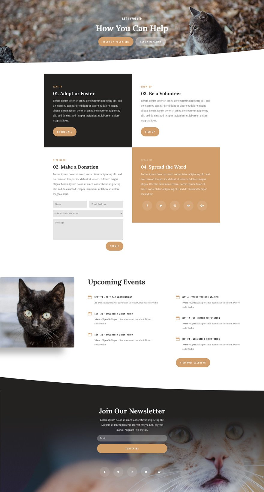 Animal Shelter Divi Layout