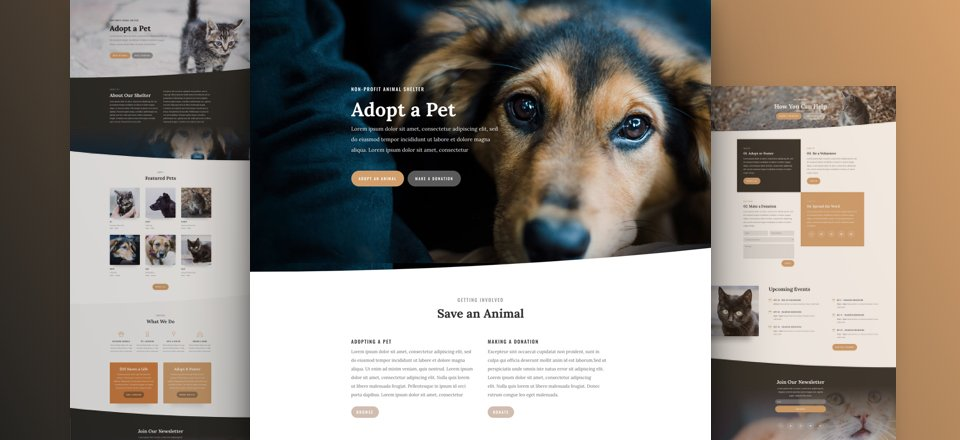 Get a FREE & Captivating Animal Shelter Layout Pack for Divi