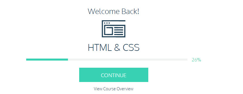 Codecademy's progress overview.